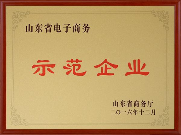 电子商务示范企业证书
